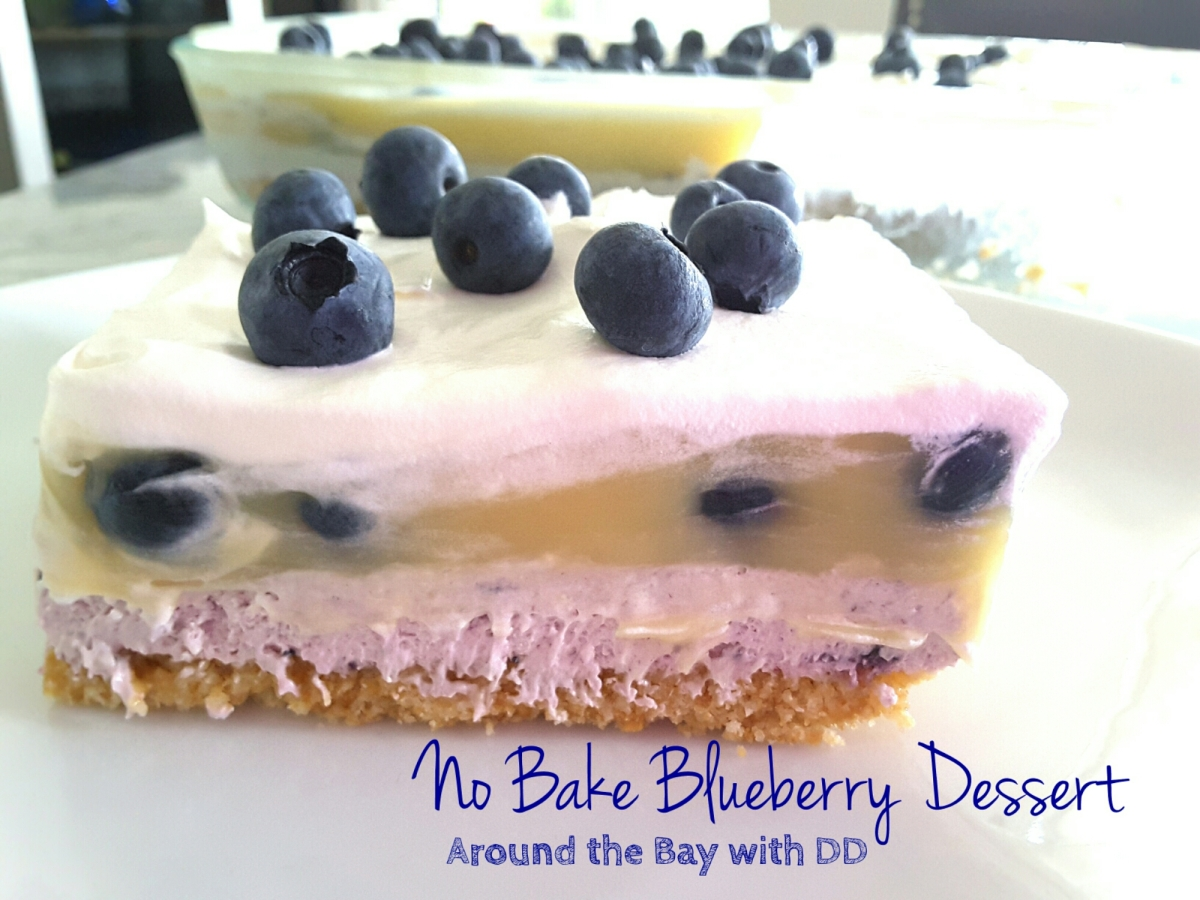 No Bake Blueberry Dessert
