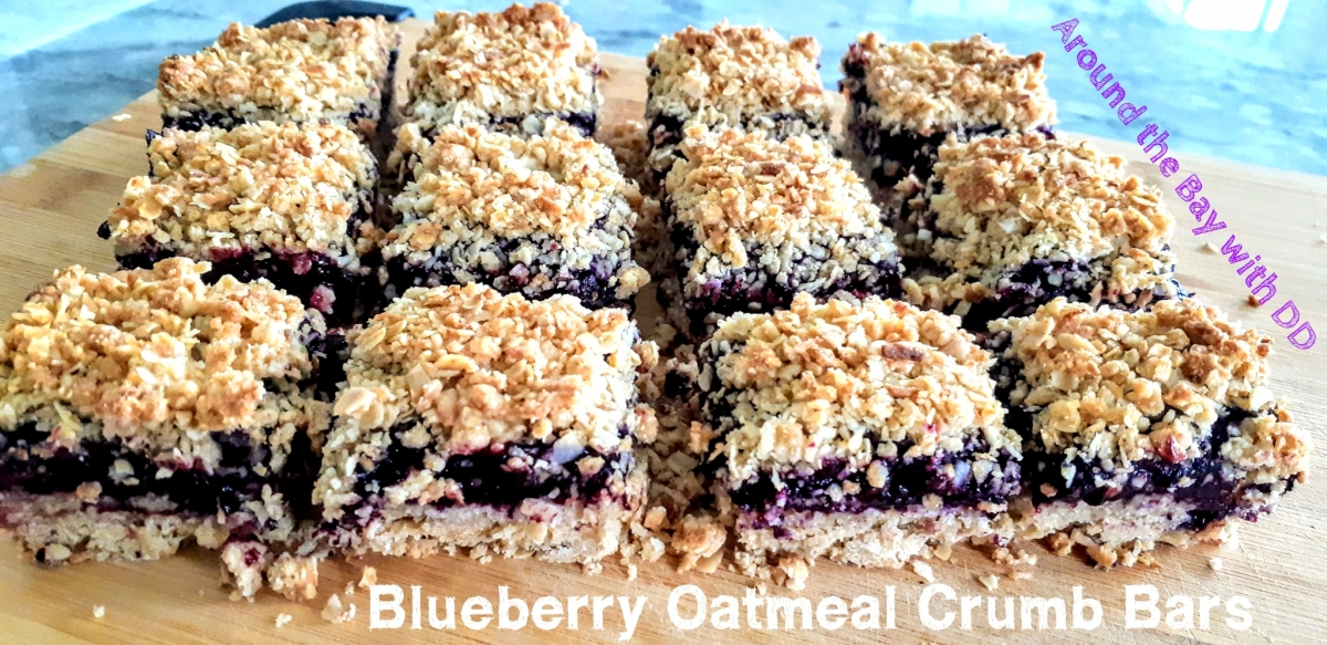 Blueberry Oatmeal Crumb Bars