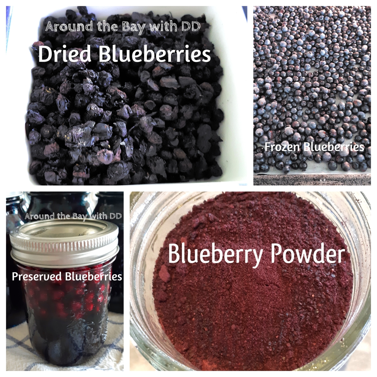 Preserving Blueberries ~ 4 Ways